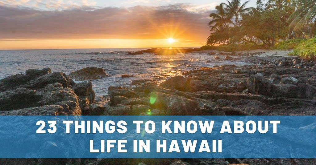 life in hawaii house sitting tips
