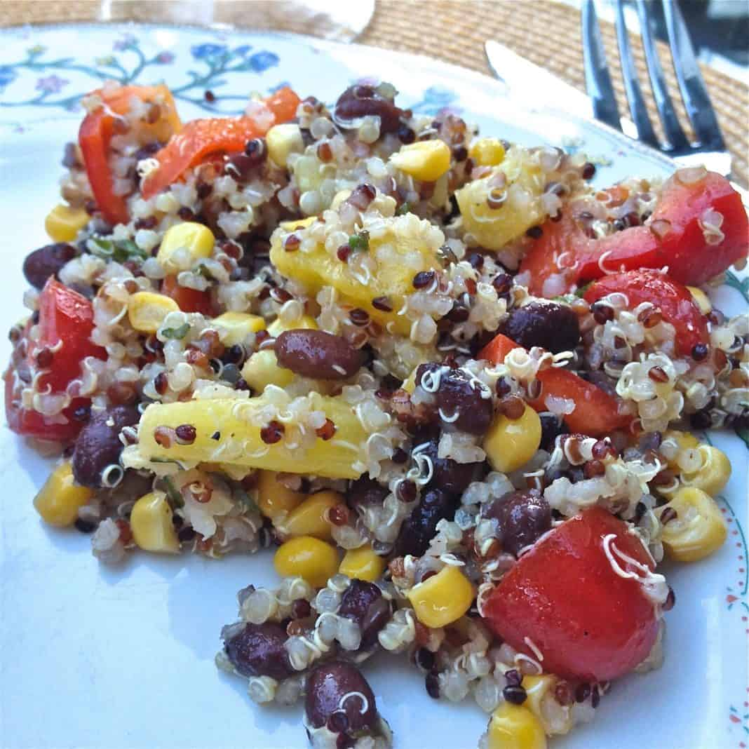 Quinoa Salad With Black Beans, Corn, Red Peppers and Pineapple on a plate