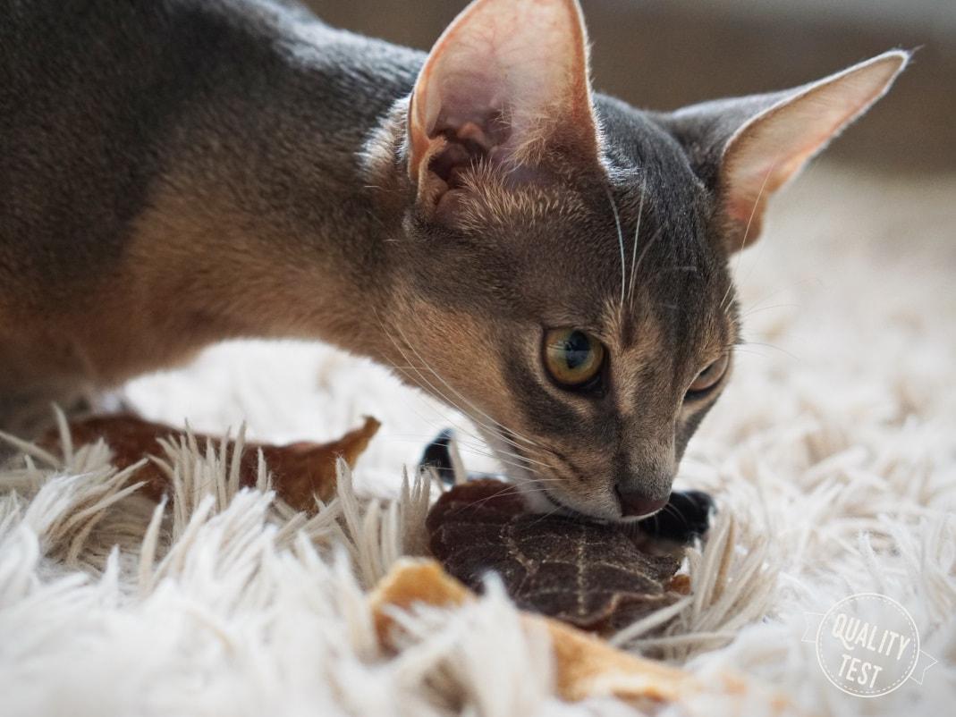 przysmaki dla kotow samo mieso 12 - Przysmaki dla kotów Samo Mięso