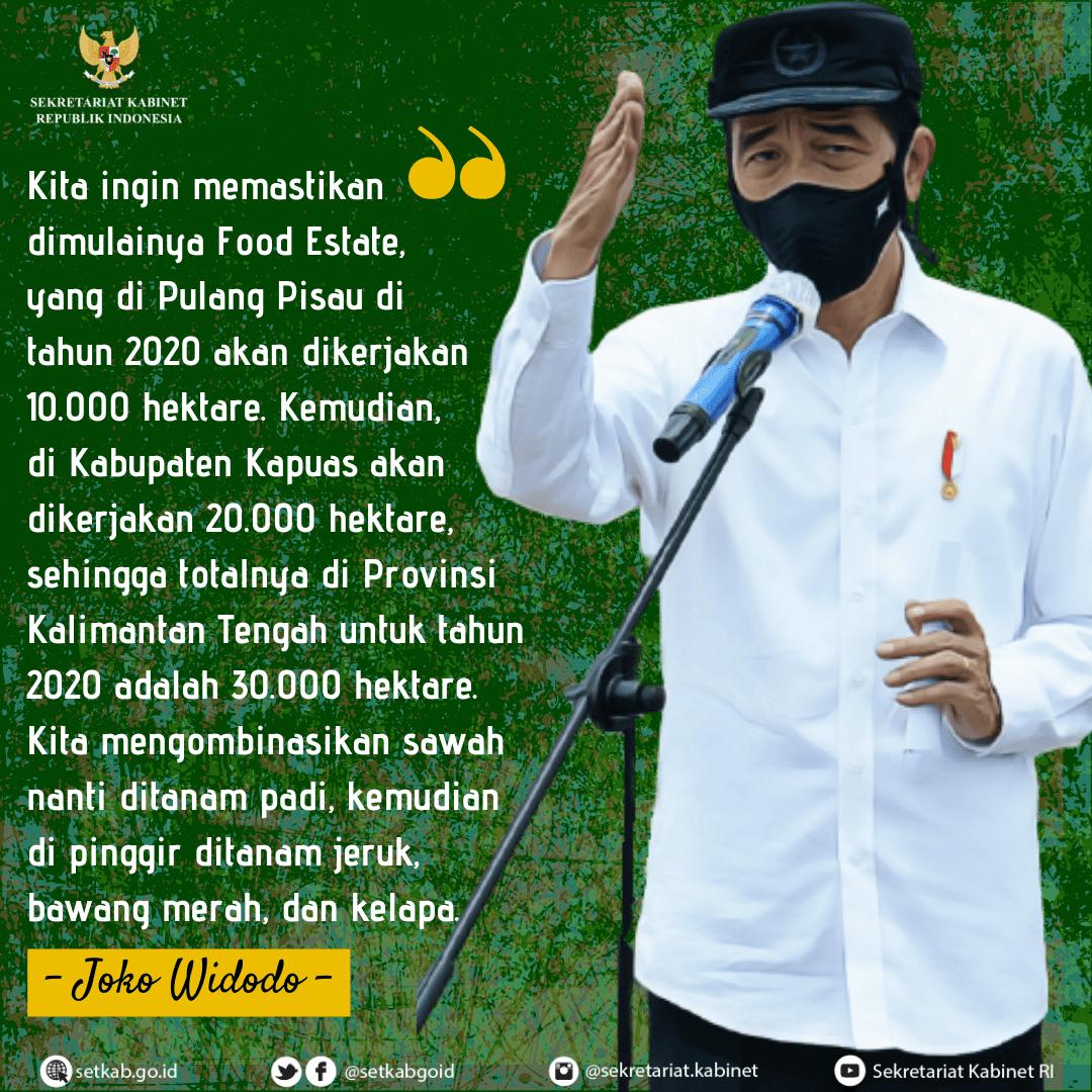 Pesan Presiden Joko Widodo pada Peninjauan Food Estate di Pulang Pisau, Provinsi Kalimantan Tengah, Kamis (8/10)
