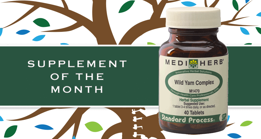 Supplement of Month: MediHerb Wild Yam Complex