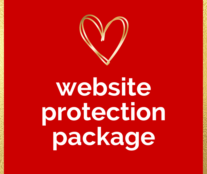 Introducing The Website Protection Package!