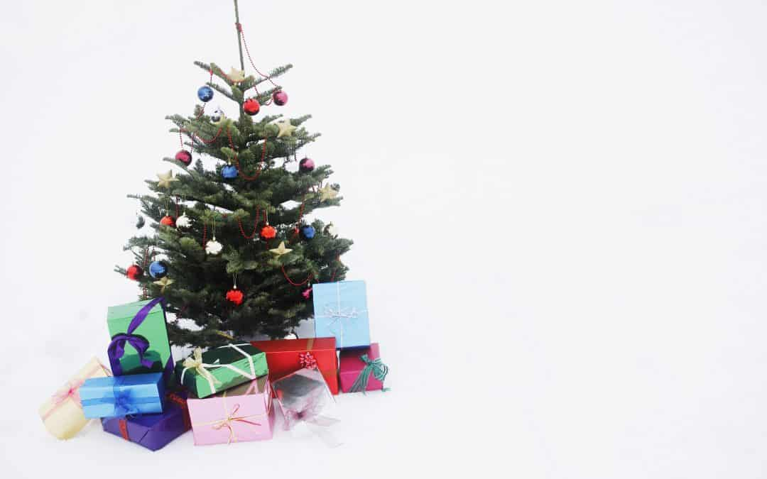Best Christmas Tree Storage Bags (that don't break the bank)