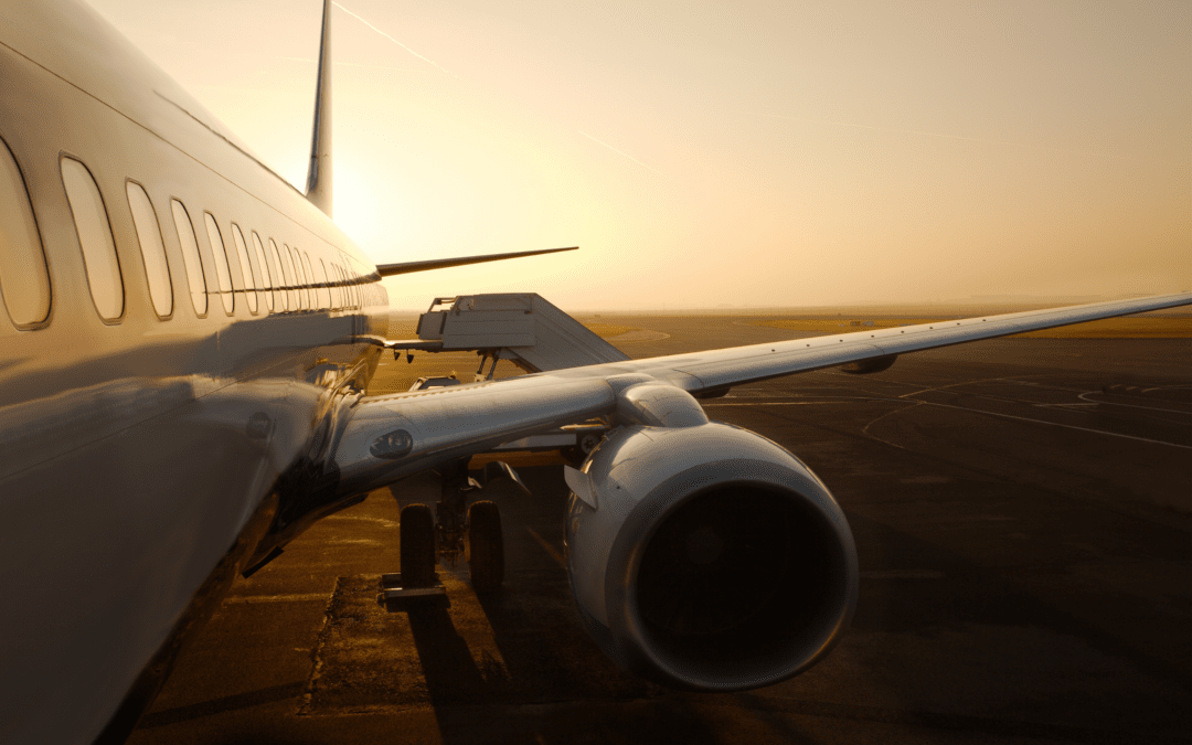 "27.05.2021 | eNetworking ""Future of the airline industry"""