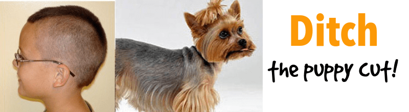 Ditch the puppy cut: Dog grooming at home