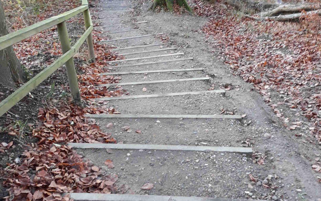 Leichten Schrittes Wandern auf dem Rundwanderweg Loiter Au – Füsinger Au