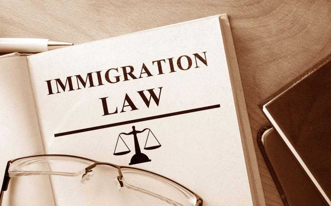 Immigration Law on Naturalization in the US