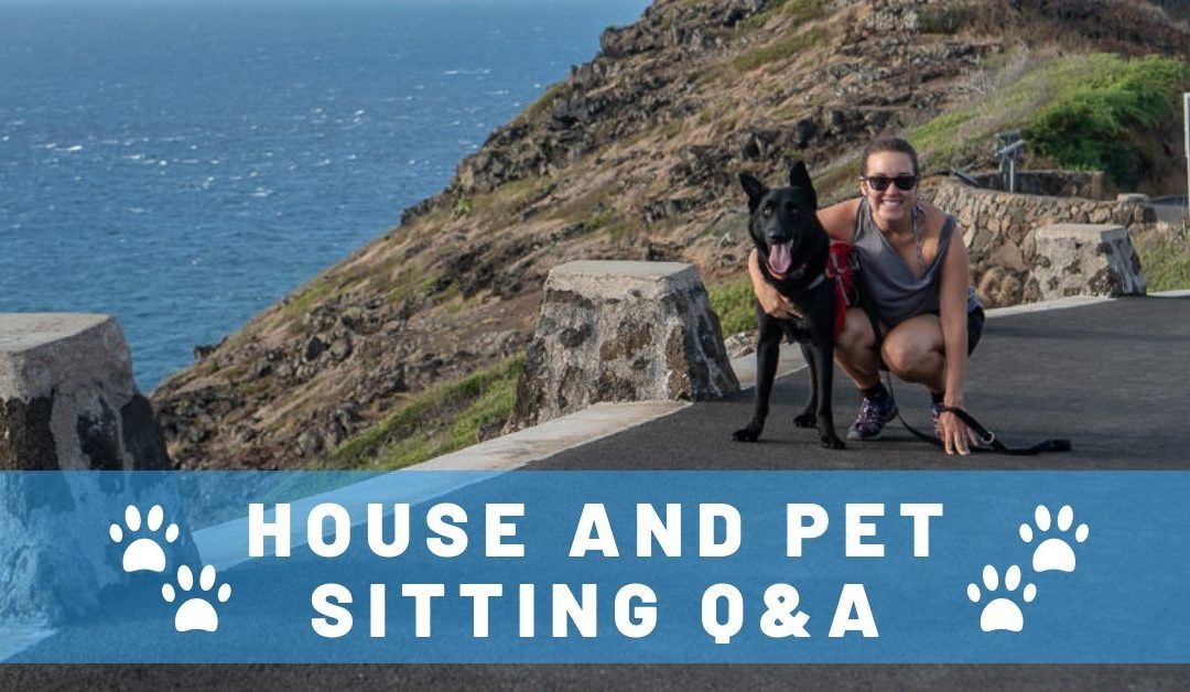 Top 14 Questions We Get Asked About House Sitting