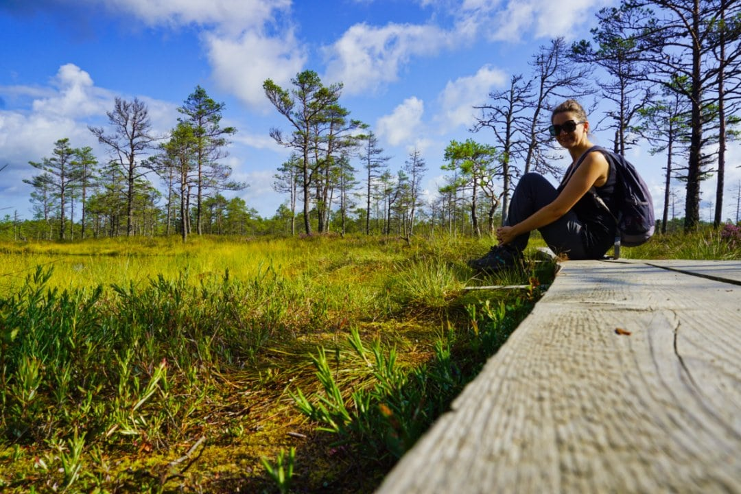 Boardwalk of the Viru bog, Lahemaa National Park, Estonia - Experiencing the Globe