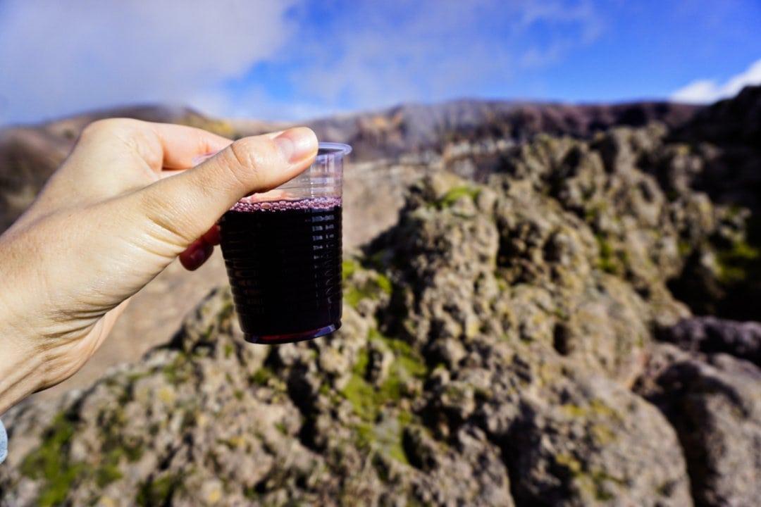 Tasting Lacrima Christi del Vesuvio