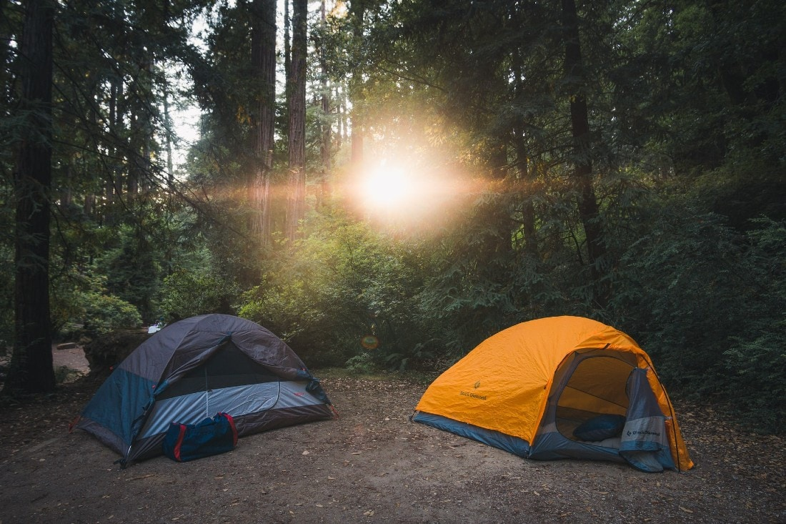 a pair of tents in a shadow of trees in the forest