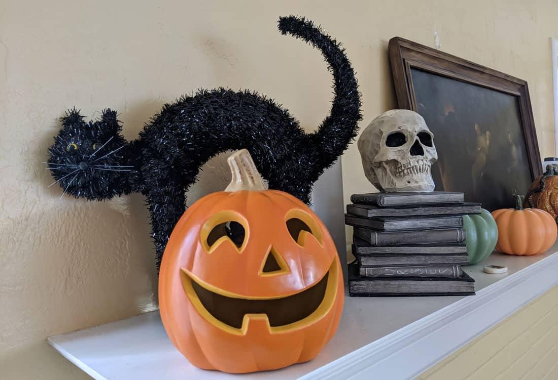 Black cats and pumpkin Halloween decorations