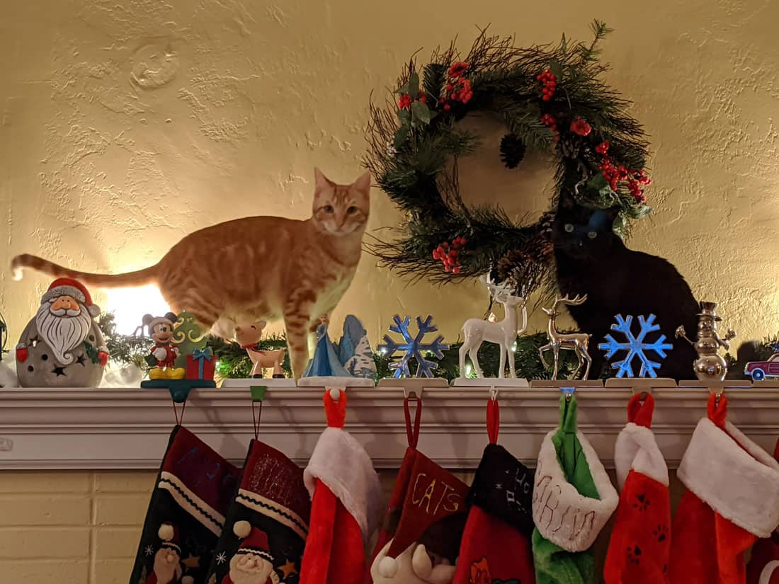 Cats exploring Christmas stockings over a fireplace.