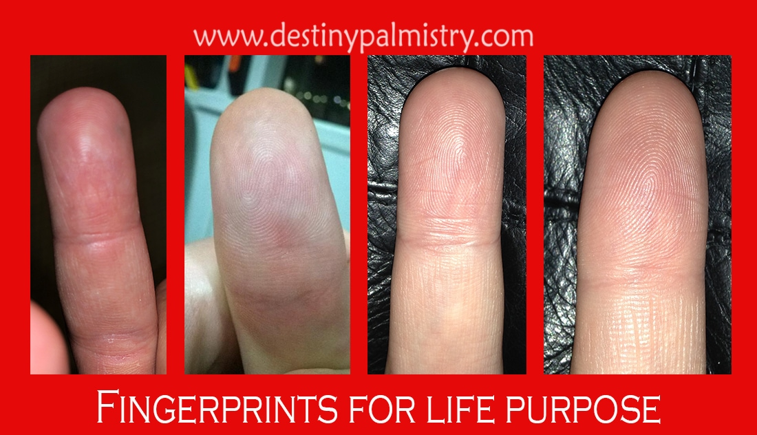 fingerprints for life purpose