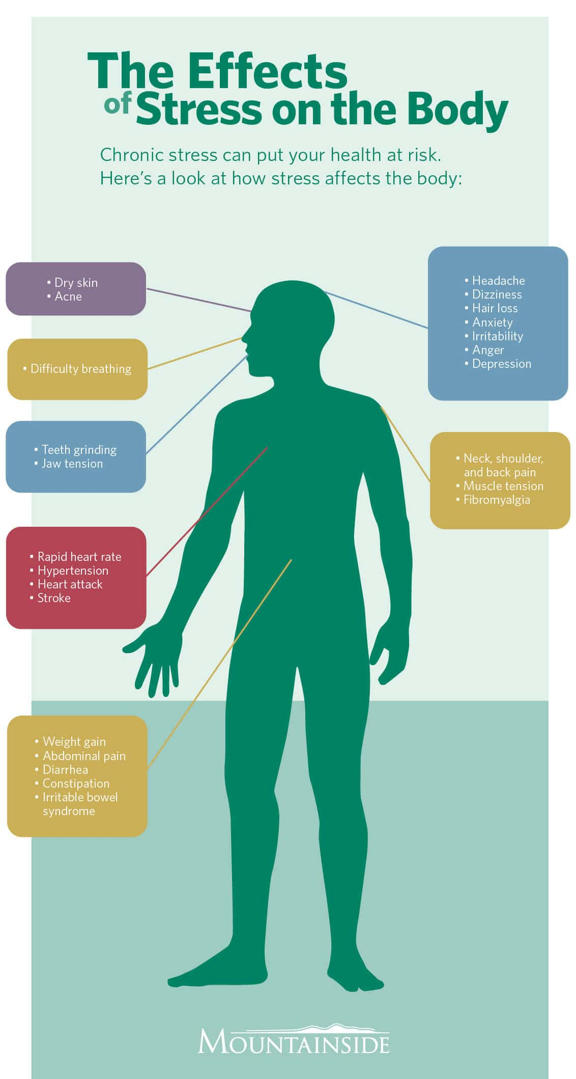 Stress and the body infographic