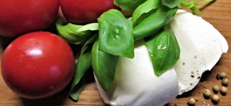 mozzarella di bufala da congelare, pomodori e basilico