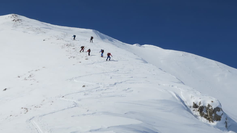 Алпийски техники в ски туринга
