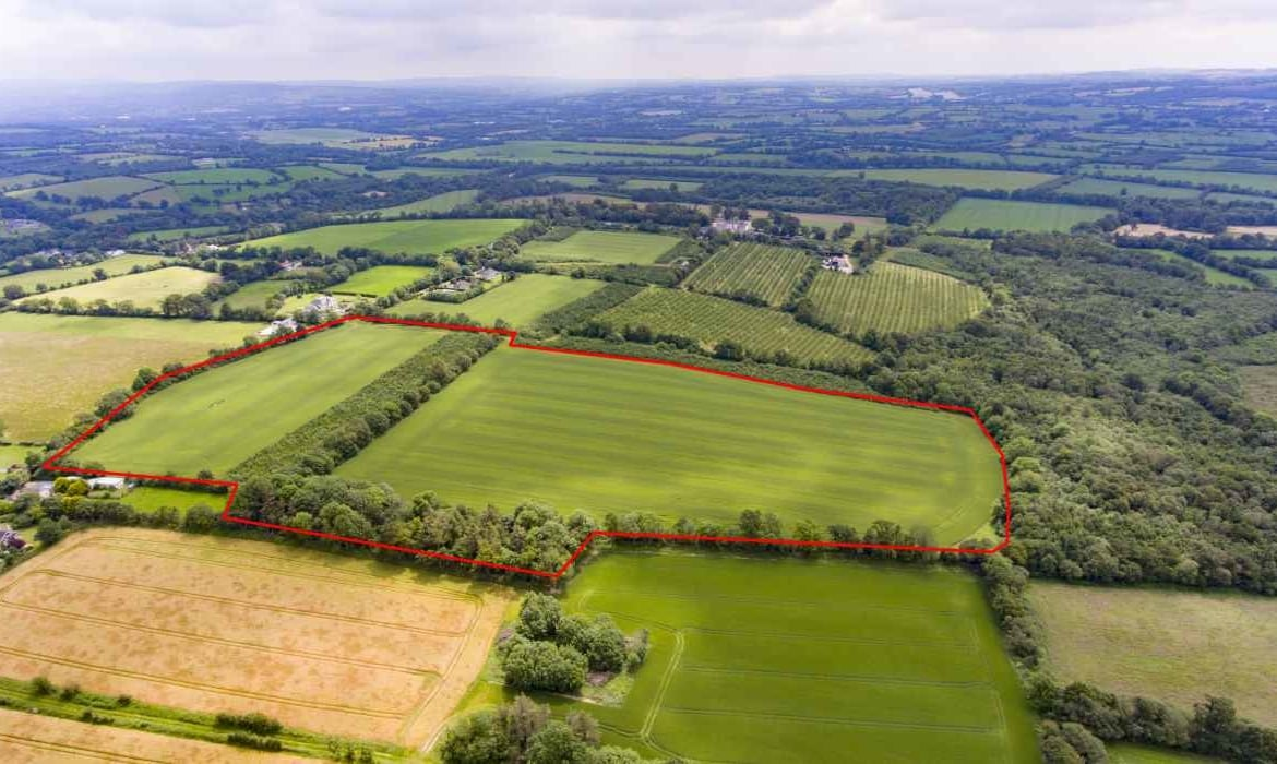 30.7 Acres Prime Arable / Tillage Farm Land Co. Cork Liam mullins & Associates