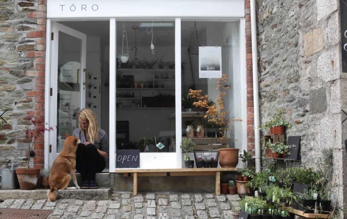 Toro-Studio-Falmouth