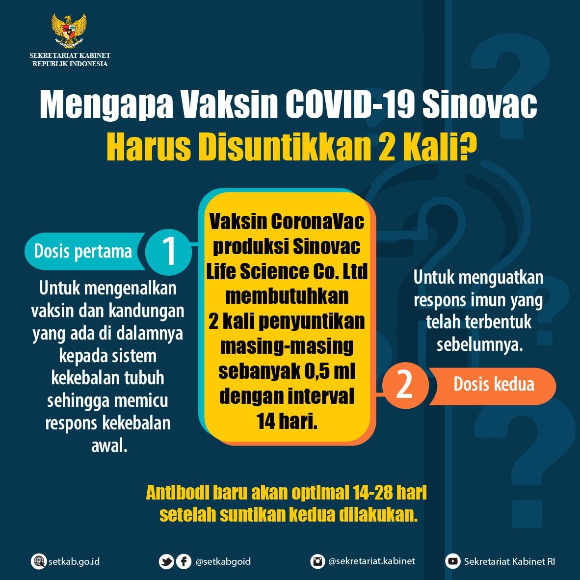 Mengapa Vaksin COVID-19 Sinovac Harus Disuntikkan 2 Kali?