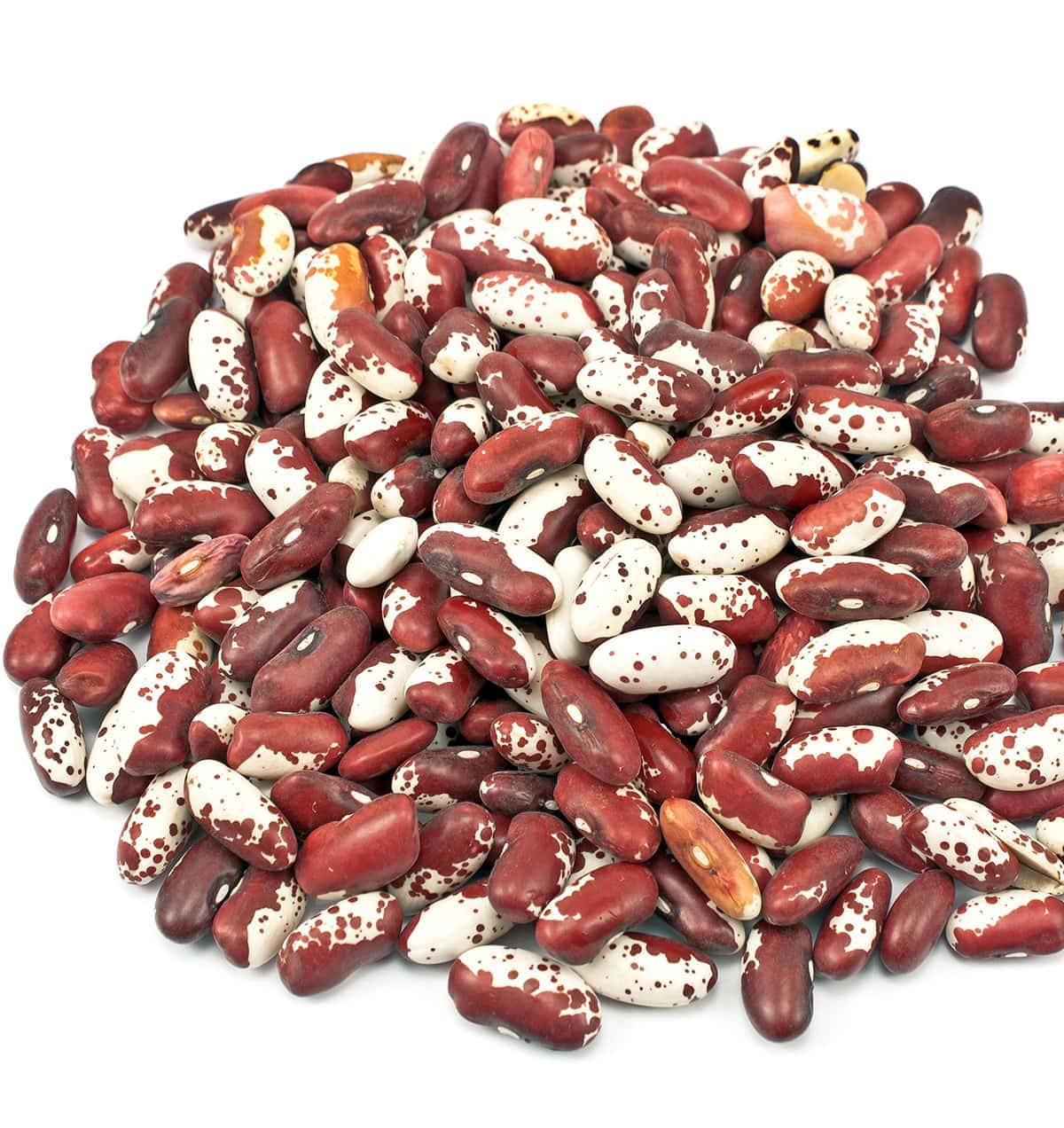 Whole anasazi beans on a white background