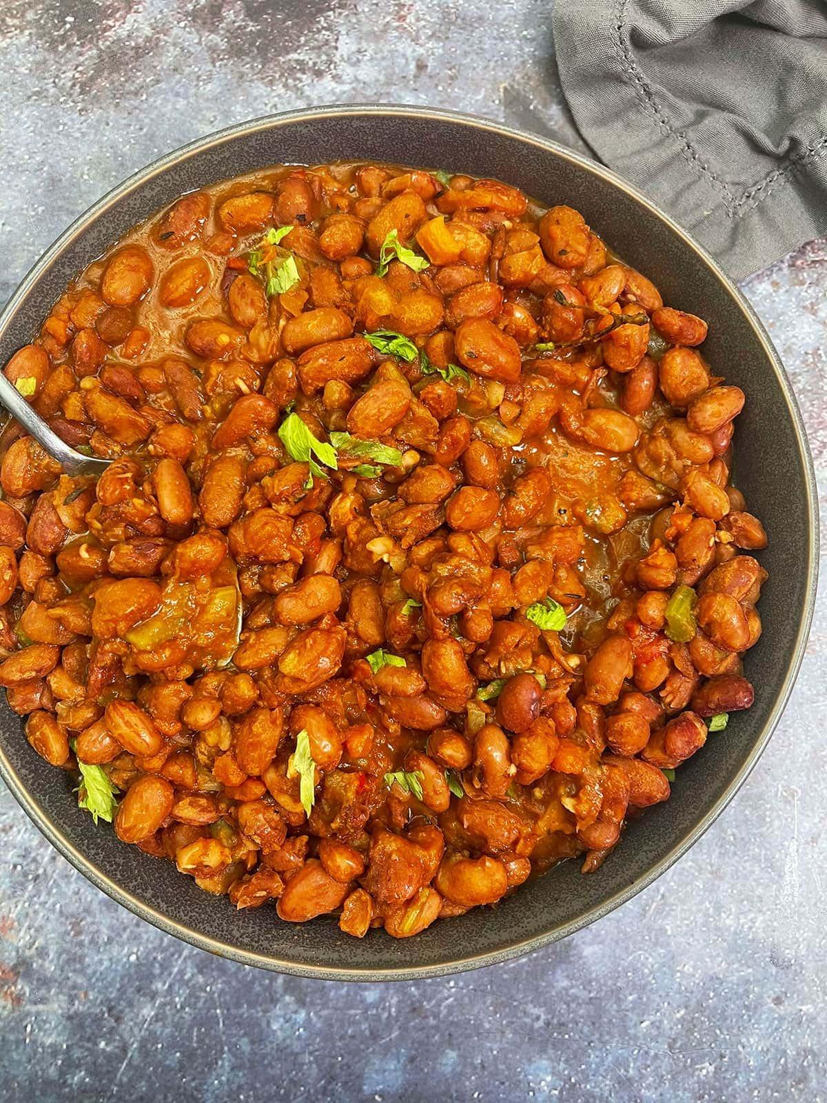 anasazi beans on a blue grey background