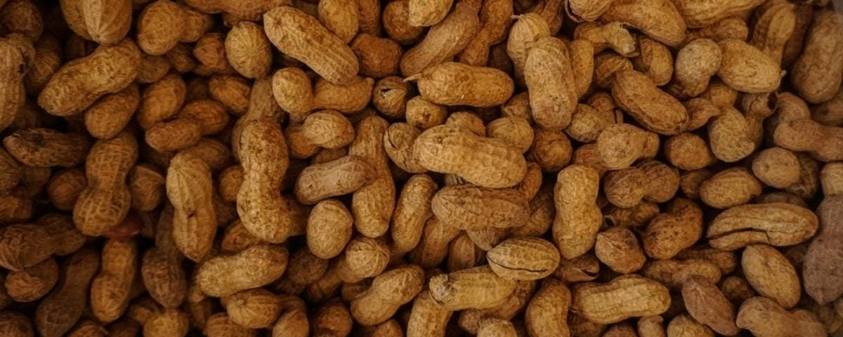 peanuts for peanut butter mousse for dental recovery