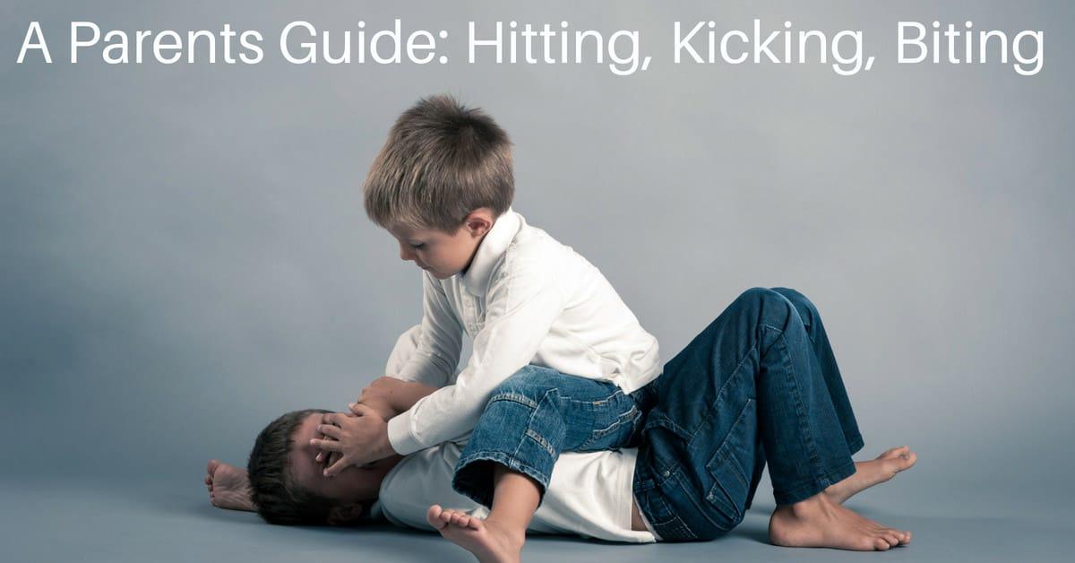 A Parents Guide_ Hitting, Kicking, Biting_mini