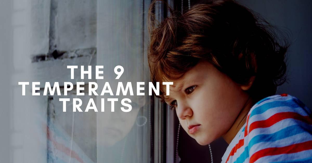 The 9 Temperament Traits