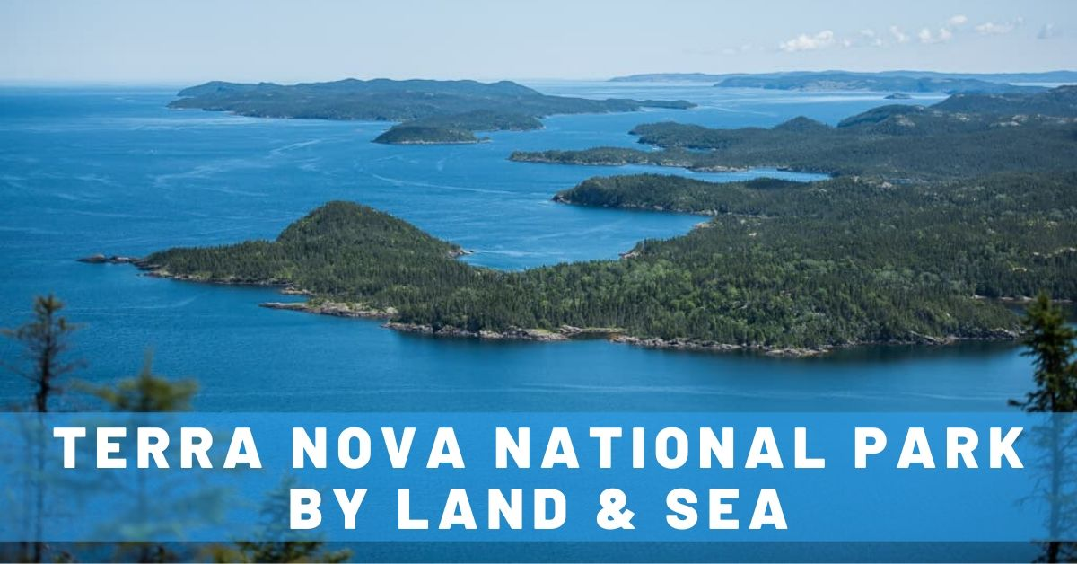 Exploring Terra Nova National Park by Land & Sea