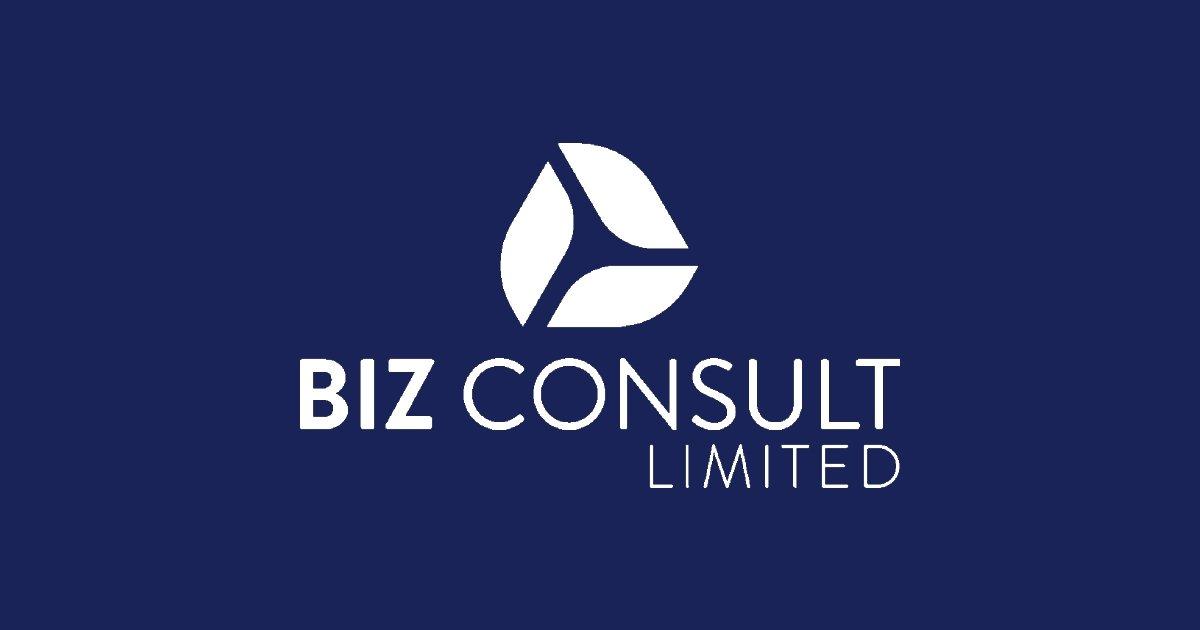 BIZ Consult