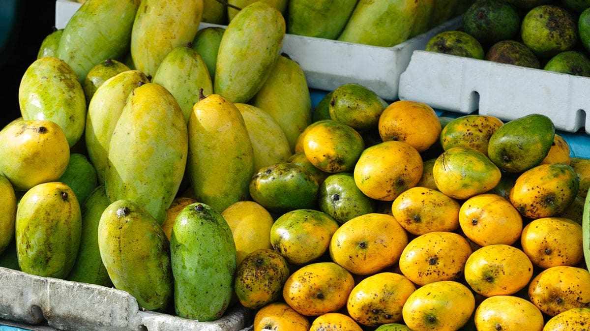 mango varieties at a market stand