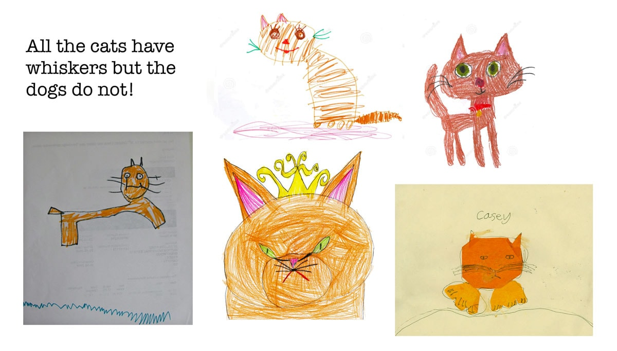 drawings of cats by kids