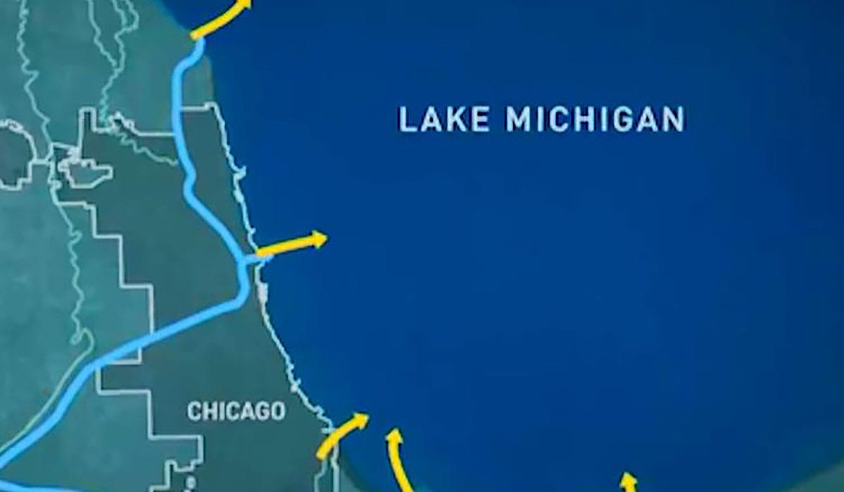 Michigan Minds Asian Carp In The Great Lakes