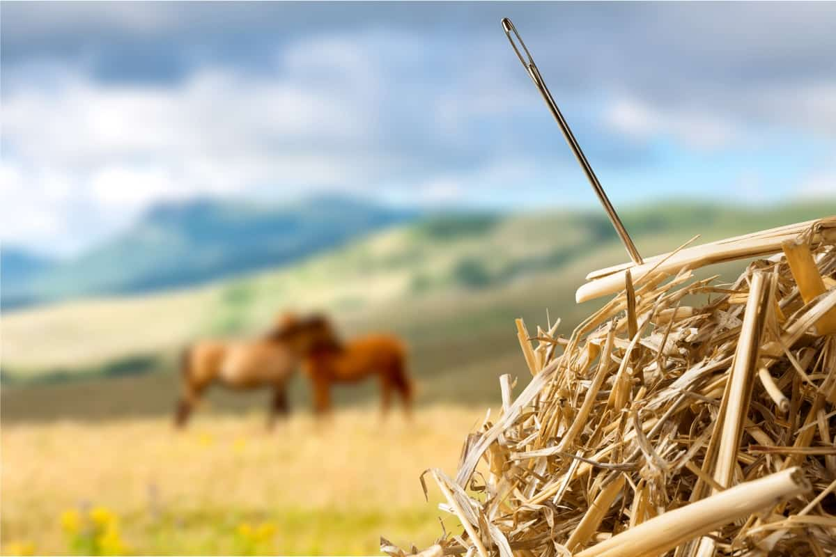 Finding a cell-free cancer signal is like finding a needle in a haystack...