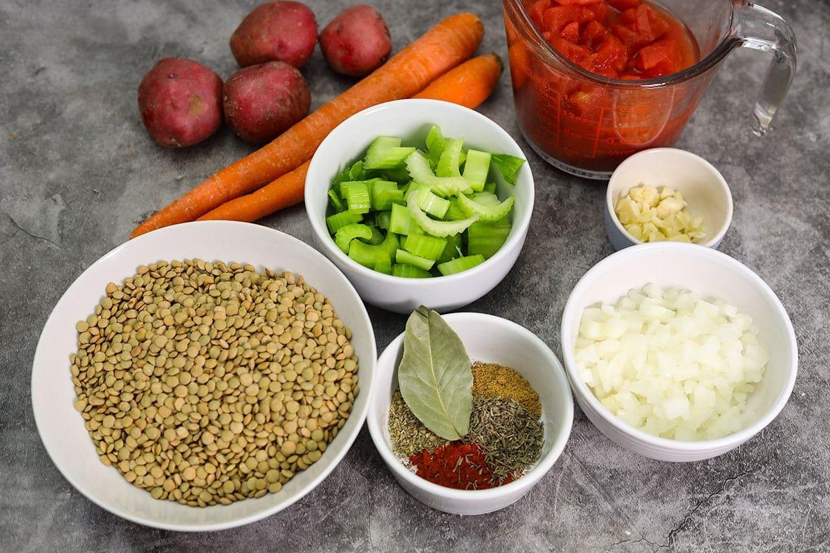 Vegan Lentil Stew ingredients on a grey background
