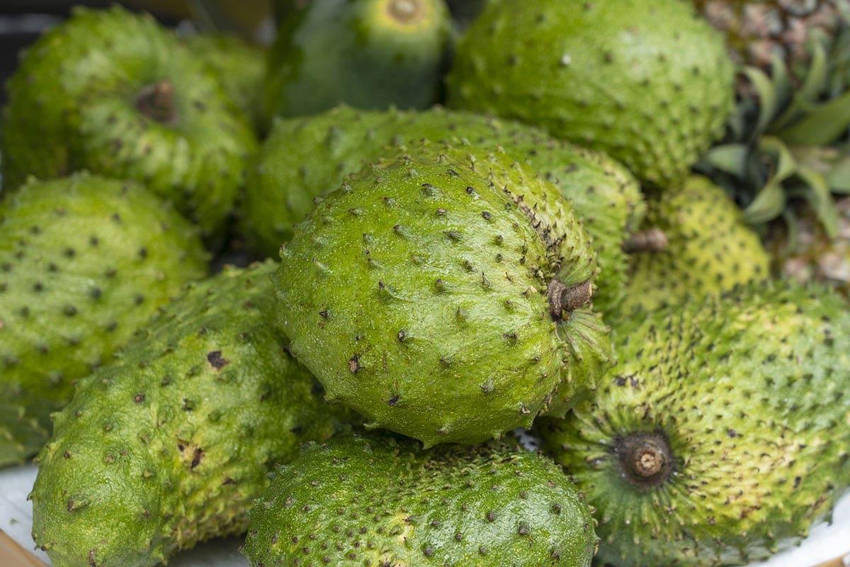 soursop fruits