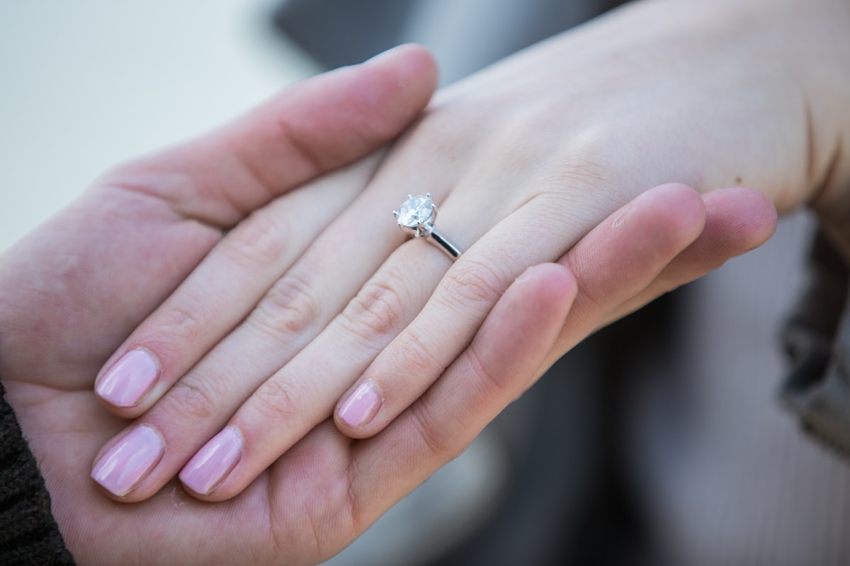 [Marriage proposal at Brooklyn Bridge Park ]– photo[15]