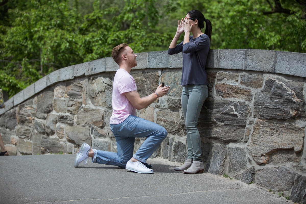 Photo Gapstow bridge wedding proposal | VladLeto