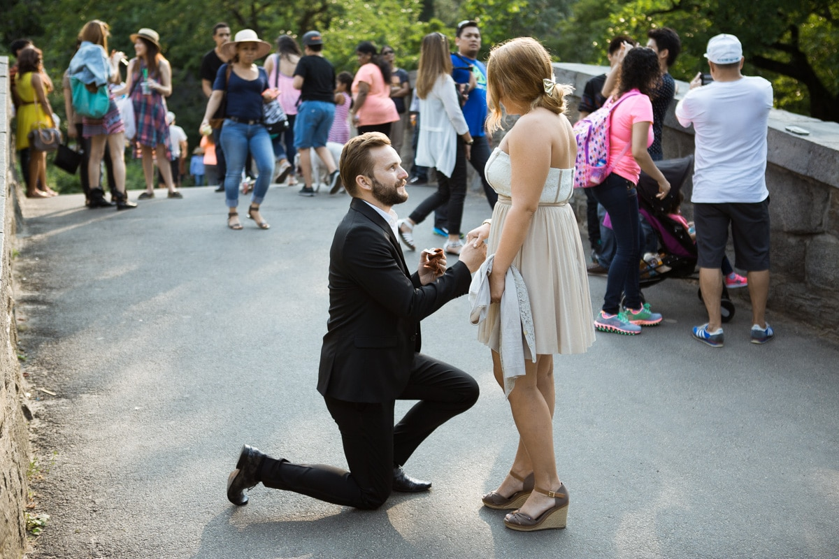 [ Gapstow Bridge marriage proposal in Central Park]– photo[1]