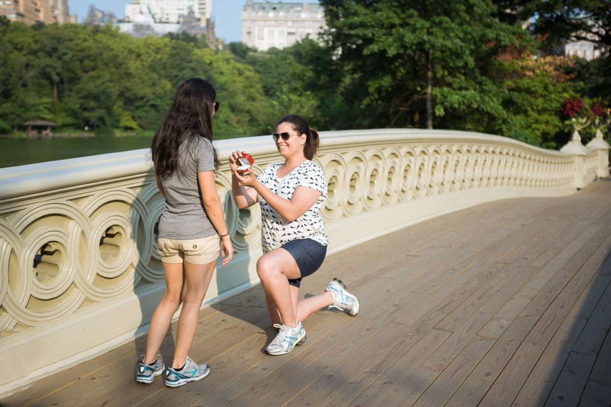 [BOW BRIDGE MARRIAGE PROPOSAL]– photo[1]