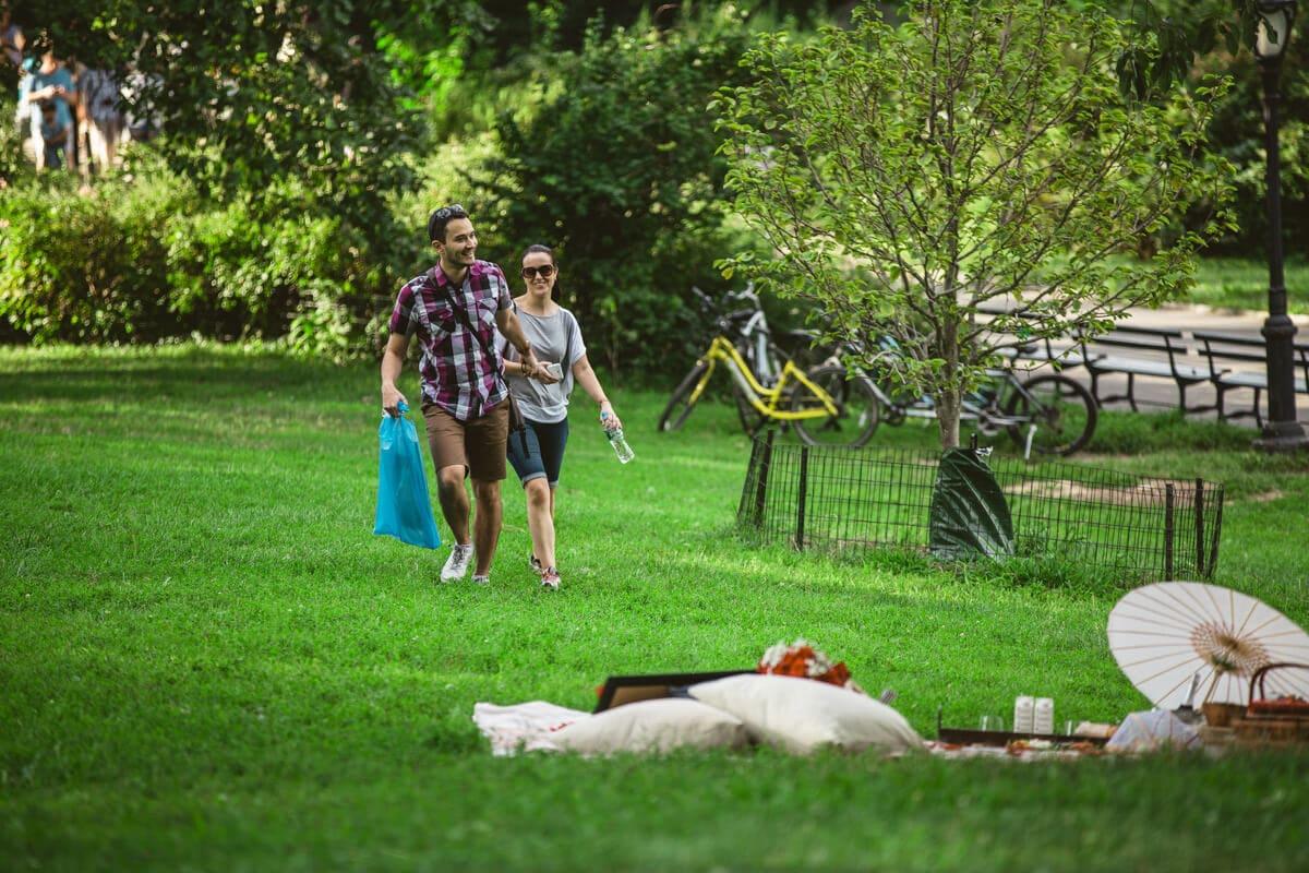 Photo Central Park Picnic Proposal