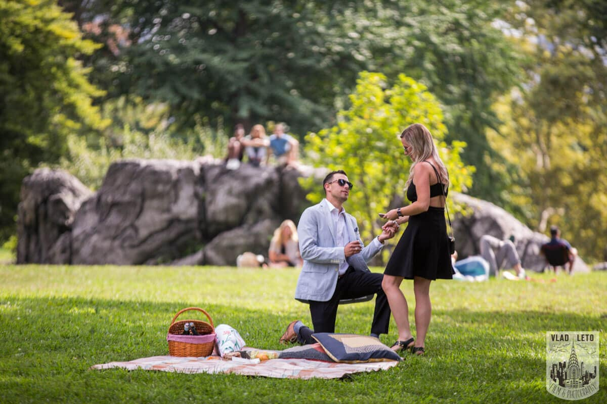 Photo Central Park Picnic Proposal | VladLeto