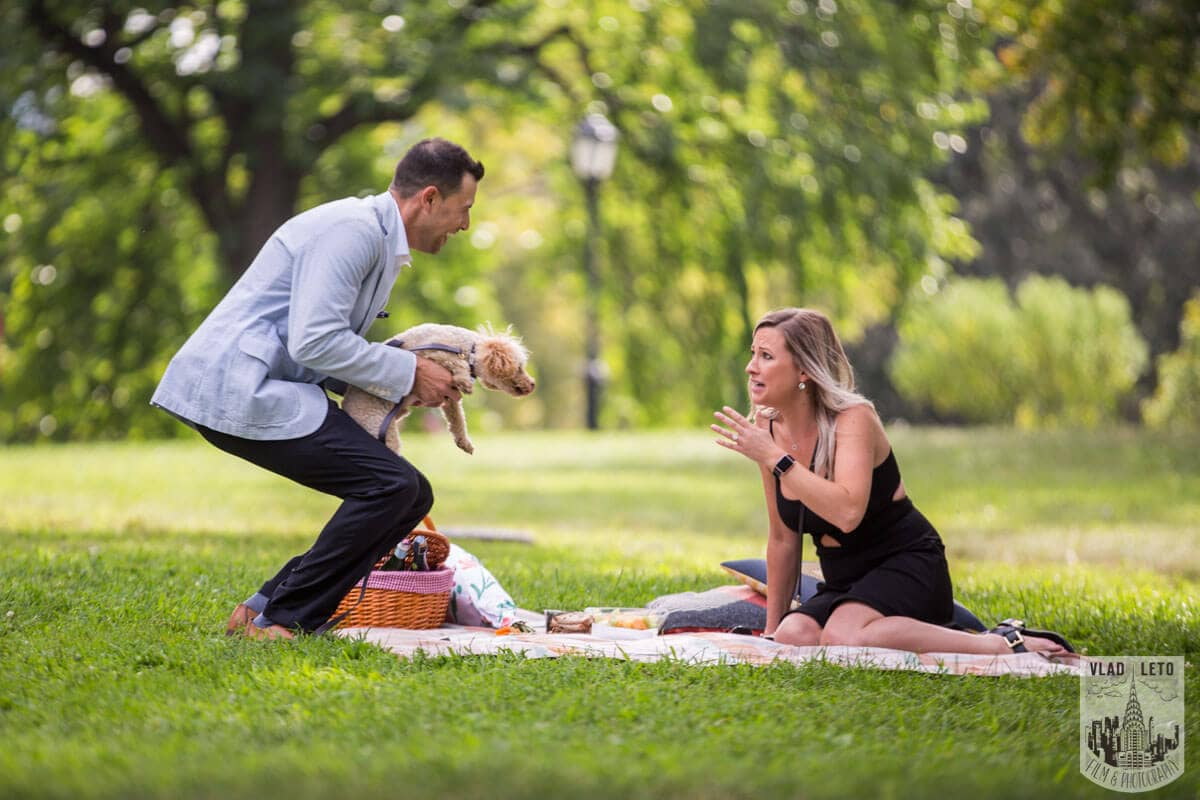 Photo 9 Central Park Picnic Proposal | VladLeto
