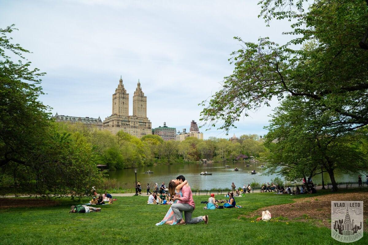 Photo 3 Central Park Proposal | VladLeto