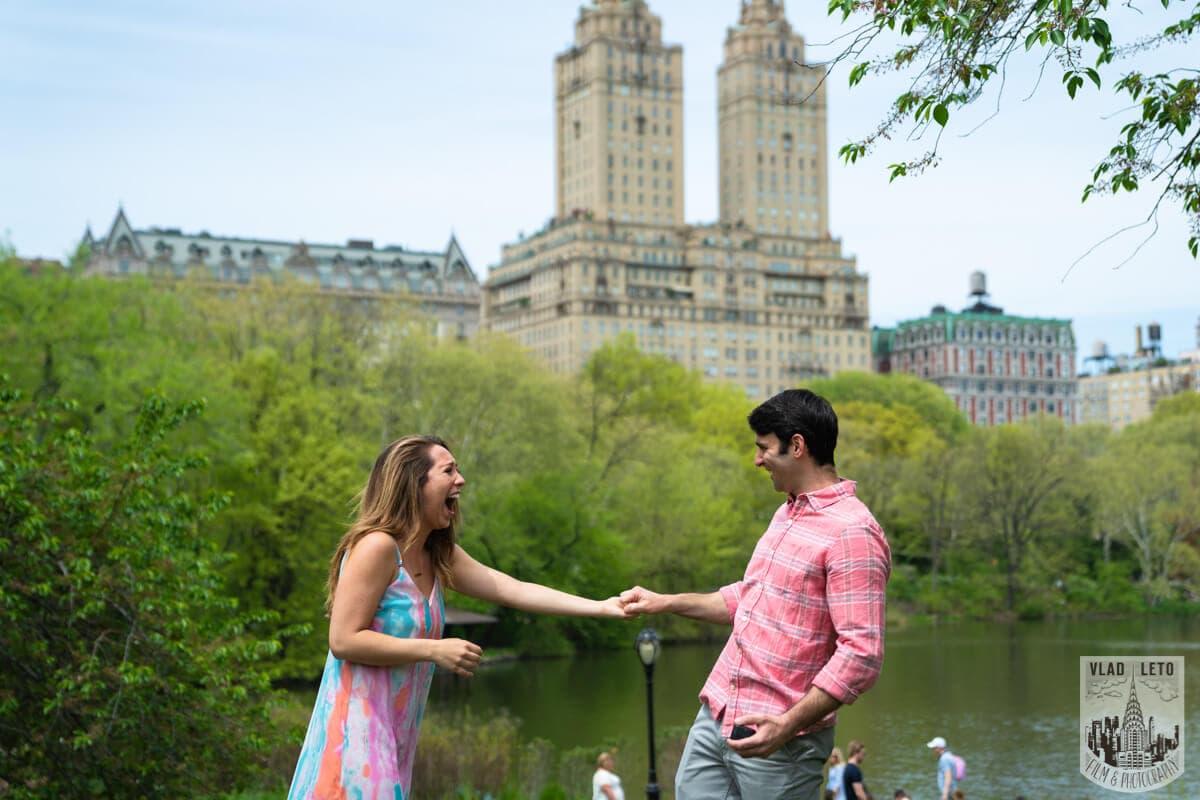 Photo 5 Central Park Proposal | VladLeto