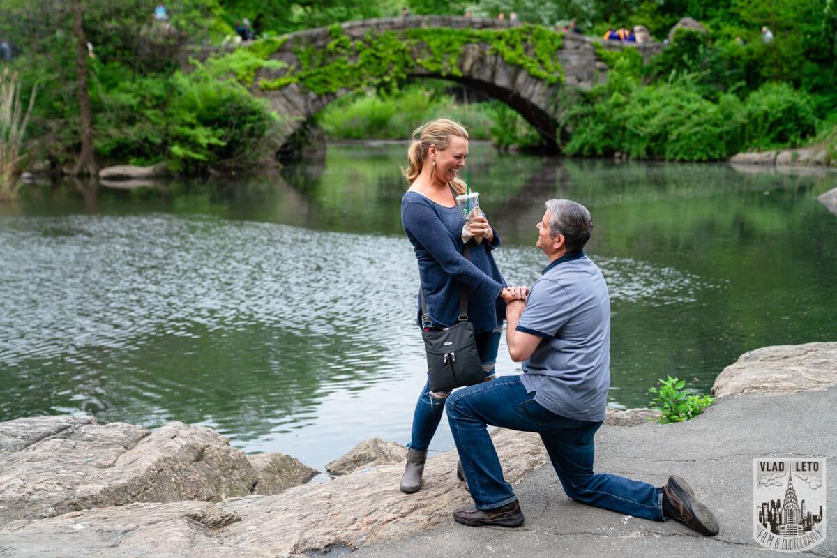 Photo 3 Central Park Proposal 2 | VladLeto