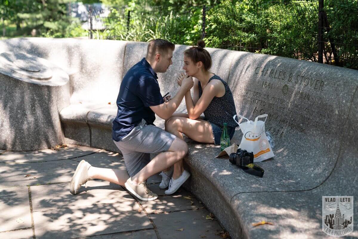 Photo Shakespeare Garden Proposal in Central Park 2 | VladLeto