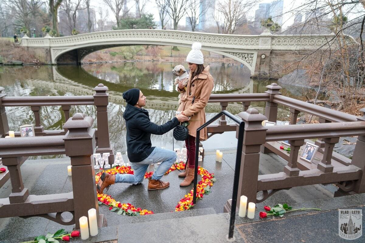 Photo 7 Central Park Marriage Proposal by Bow Bridge. | VladLeto