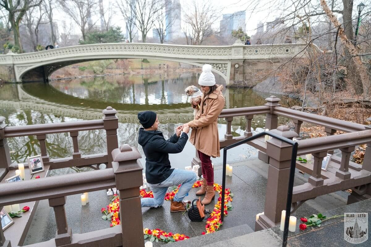 Photo 5 Central Park Marriage Proposal by Bow Bridge. | VladLeto